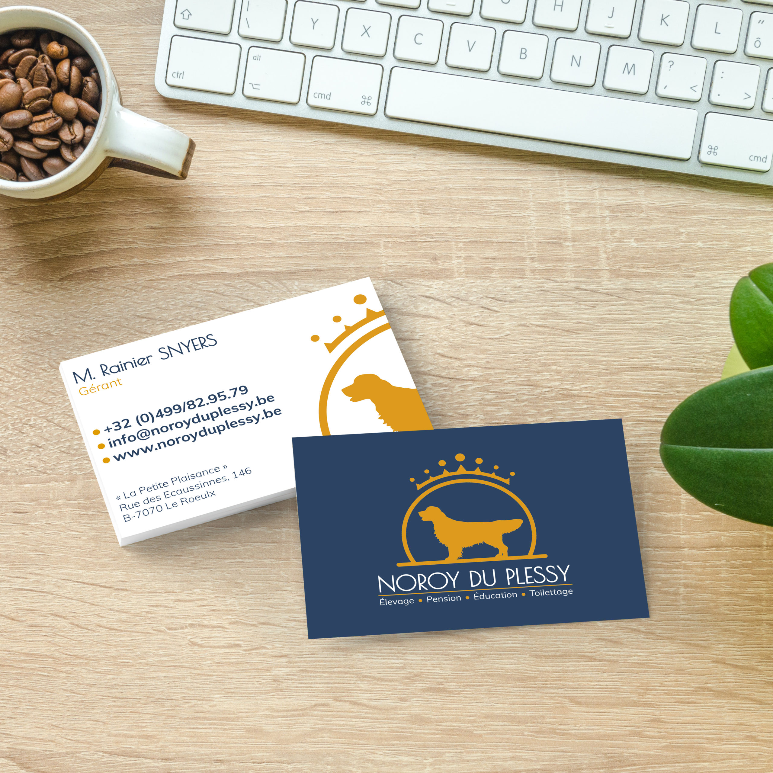Noroy du Plessy | Business Card